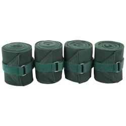 Bandes élastiques polaires vertes