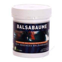 Greenpex Balsabaume