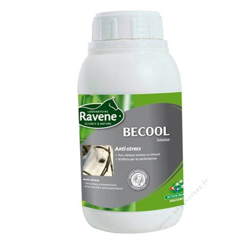 Ravene Becool