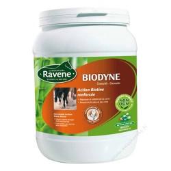Ravene Biodyne