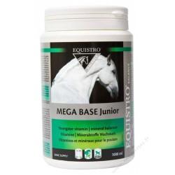 Equistro Mega Base Junior