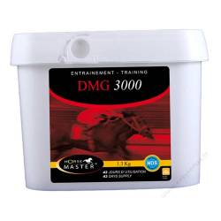 Horse Master DMG 3000