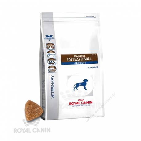 Royal Canin Gastro Intestinal Junior GIJ 29