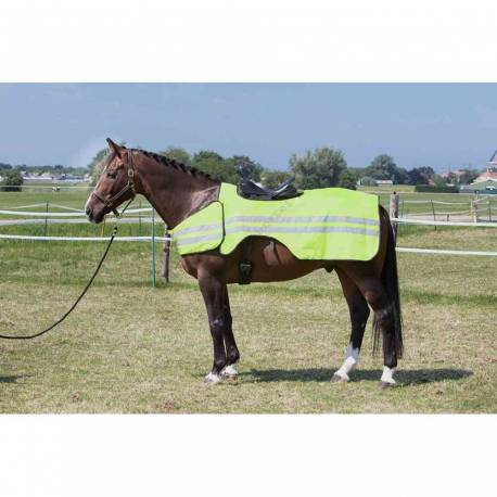 Couvre-reins Reflective cheval
