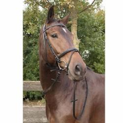 Bridon Harry's Horse Bronze Cheval