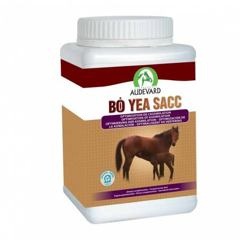Bonutron Bo Yea Sacc cheval