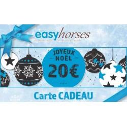 Carte Cadeau pour Noël - 20€
