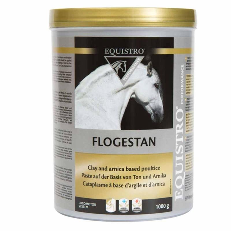 Equistro Flogestan